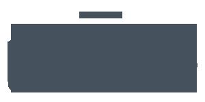 LBMC-publications-logo-gris-bleu