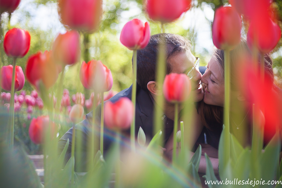 shooting photo couple : couple s'embrassant dans un champ de tulipes