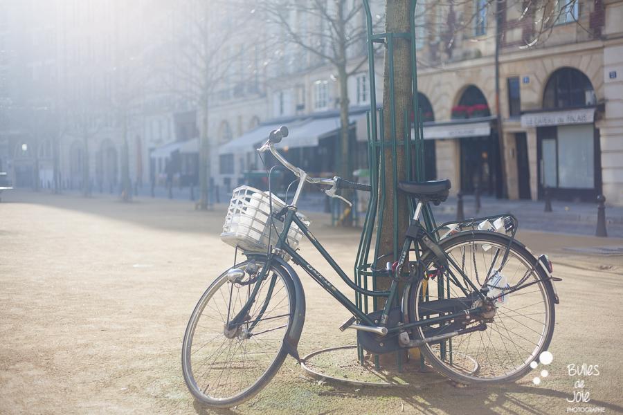 Bulles de Joie Photographie   Photographer in Paris