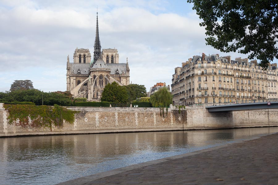 Paris proposal spots: wedding proposal Notre-Dame   Bulles de Joie
