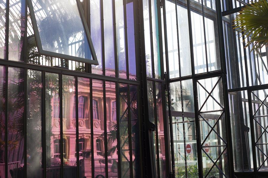 Elopement wedding photographs paris | Jardin des plantes