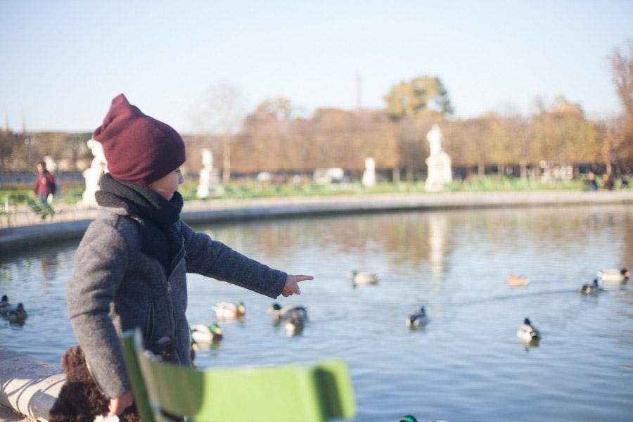 Petit garçon montrant les canards au jardin des Tuileries à Paris. Souvenir immortalisé par Bulles de Joie, photographe famille à Paris et région parisienne, Hauts-de-Seine, Yvelines.
