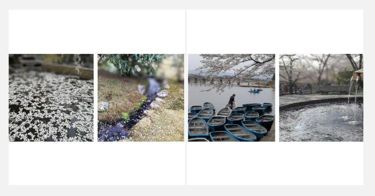 Une photographe pro qui créer pour vous un album de votre voyage, d'un événement marquant de votre vie : mariage, baptême, anniversaire...