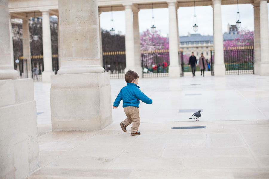 Kid chasing a pigeon in Paris