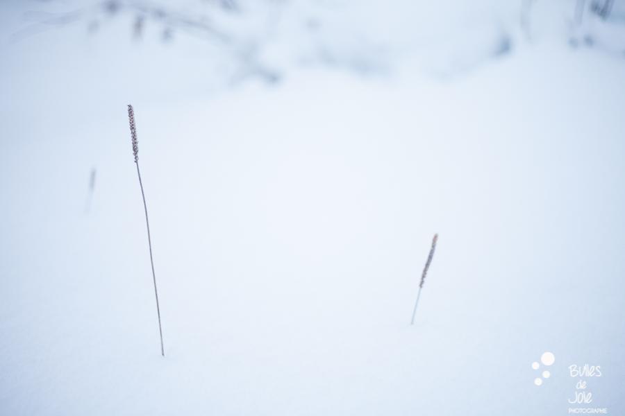 Sérénité de la neige... Photo de paysage lors d'une séance photo couple en montagne.