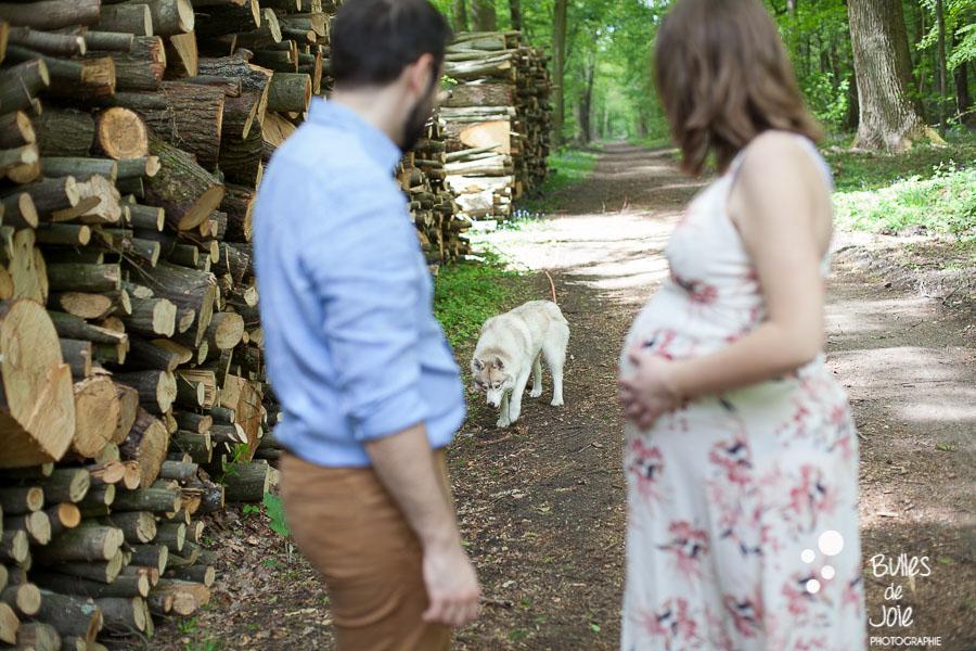 Shooting grossesse avec un chien dans les Yvelines
